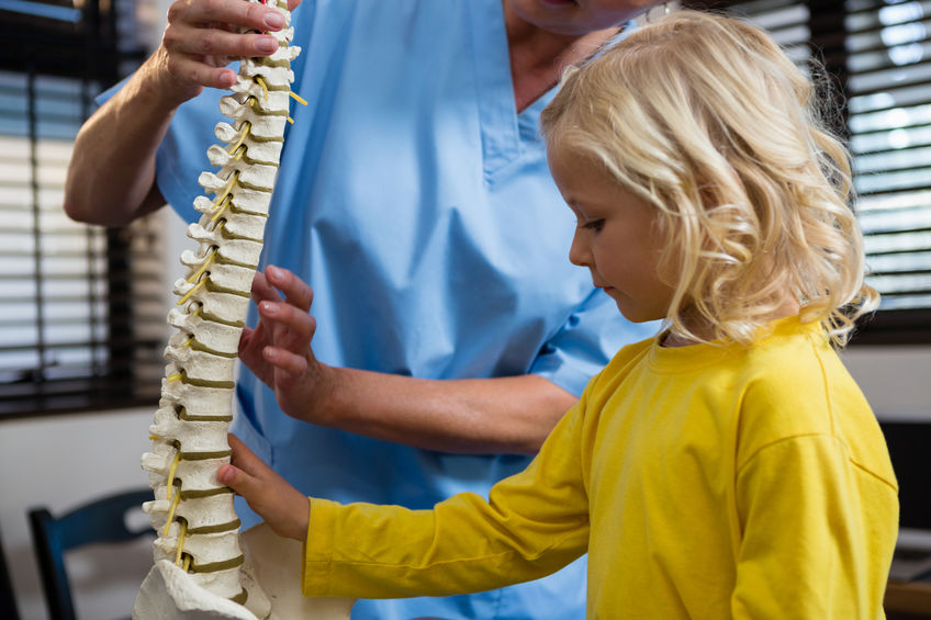 Zoom sur une séance d'ostéopathie