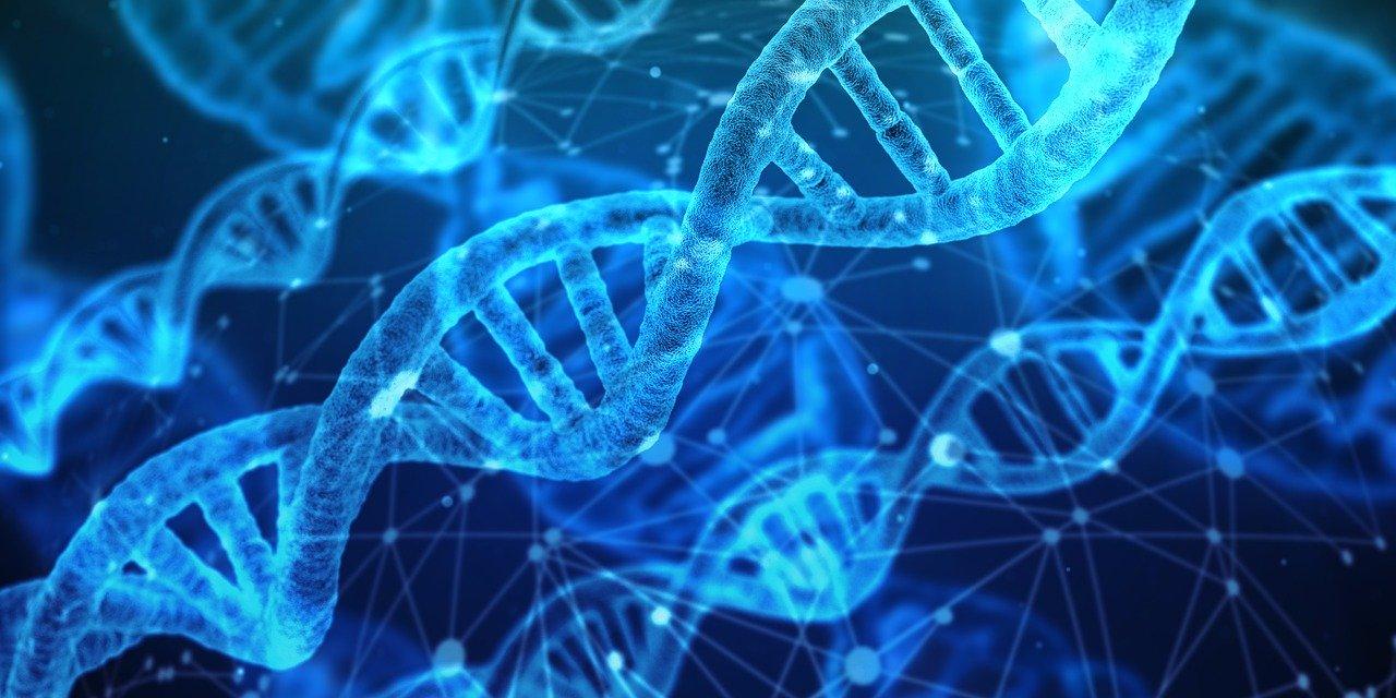 Retrouvez vos ancêtres et confirmez vos origines grâce au test ADN